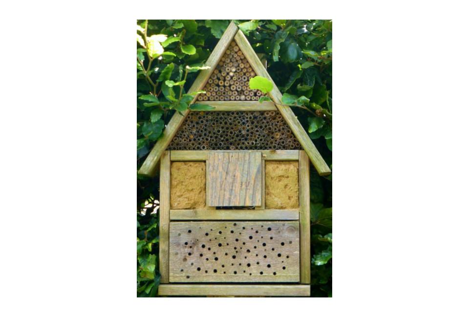 Kostenloser Bauplan für ein tolles Bienenhaus