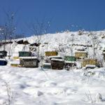 Bienenstockheizung im Winter