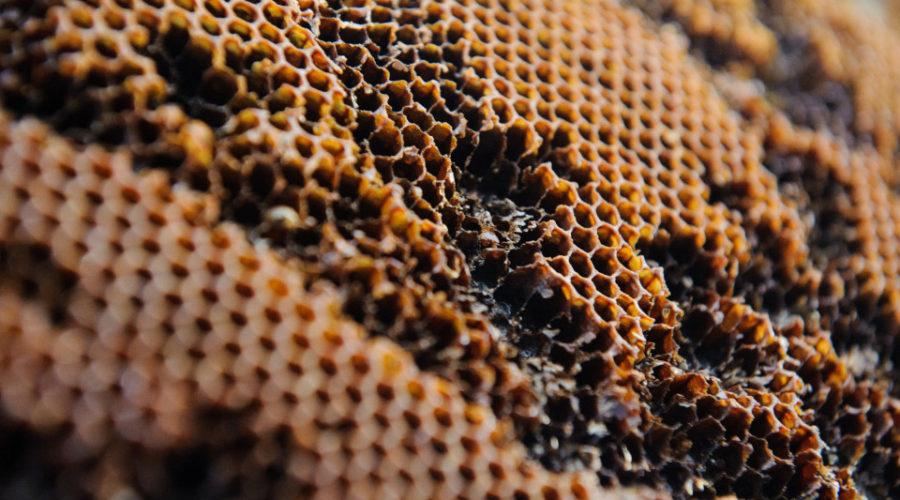 Kristallisierten Honig cremig rühren