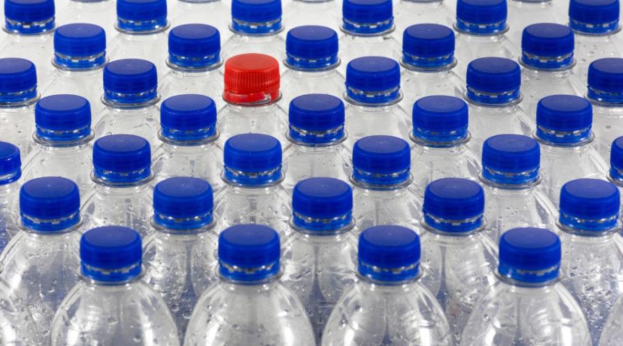 Eine Bienenfalle aus Plastikflaschen
